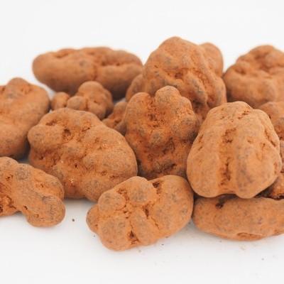 Choco pecan truffel