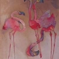Foto van Flamingo's
