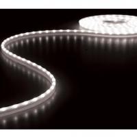 Foto van FLEXIBELE LED STRIP - KOUDWIT 6500K - 300 LEDs - 5m - 12V