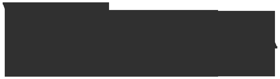 logo van Woudstra Schoenmode's shop