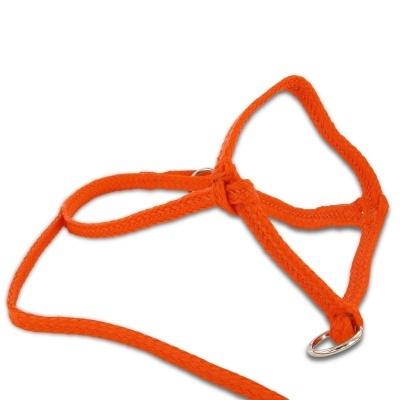 Kalver halster nylon oranje