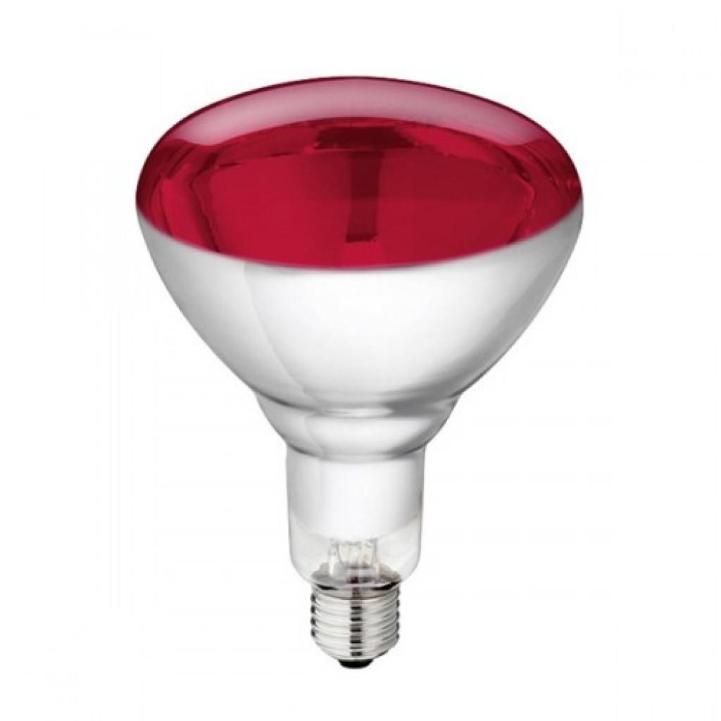Warmtelamp / infrarood lamp Philips 250Watt 10 stuks
