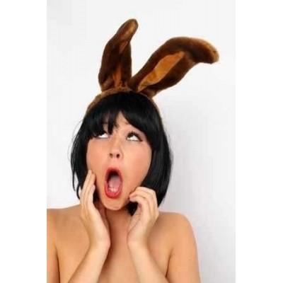 Foto van Hoofddiadeem konijnenoren bruin