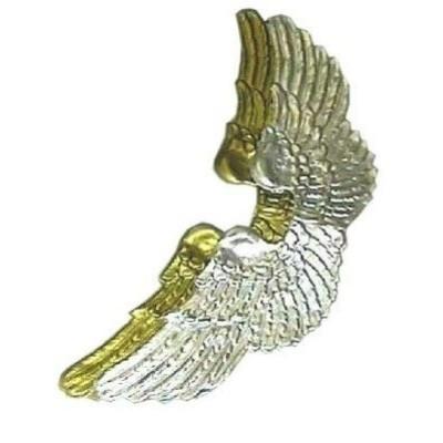 Foto van Engelenvleugels groot zilver