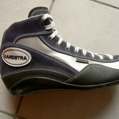 Zandstra 1166