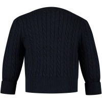 Picture of Ralph Lauren 310543047 baby sweater navy