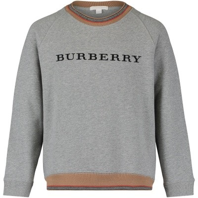 Picture of Burberry 8002427 kids sweater gray