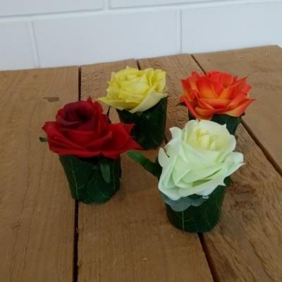 Roosje voor op tafel diverse kleuren
