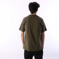 Afbeelding van Dickies 06 210578-DKO T-shirt Stockdale Groen