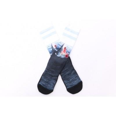 Stance M556B16LAN Socks Landlord Blauw