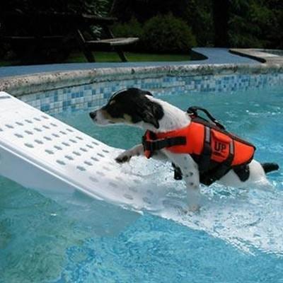Foto van Azalp Skamper-Ramp trap speciaal voor honden